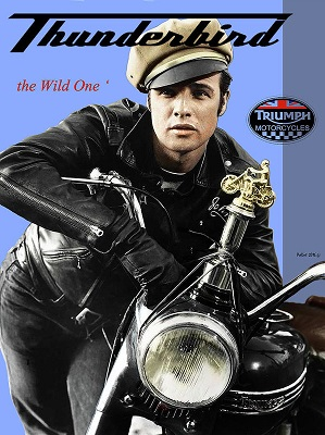 triumph-thunderbird-650-cc-the-wild-one