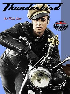 triumph-thunderbird-650-cc-the-wild-one